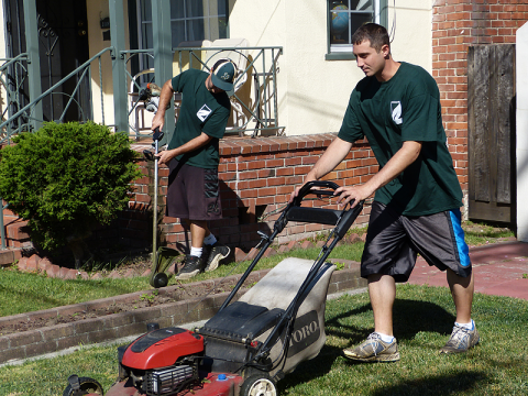 Alameda Lawn Care and landscaping